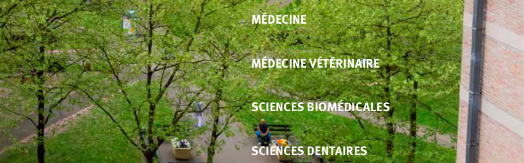 Brochure - médecine